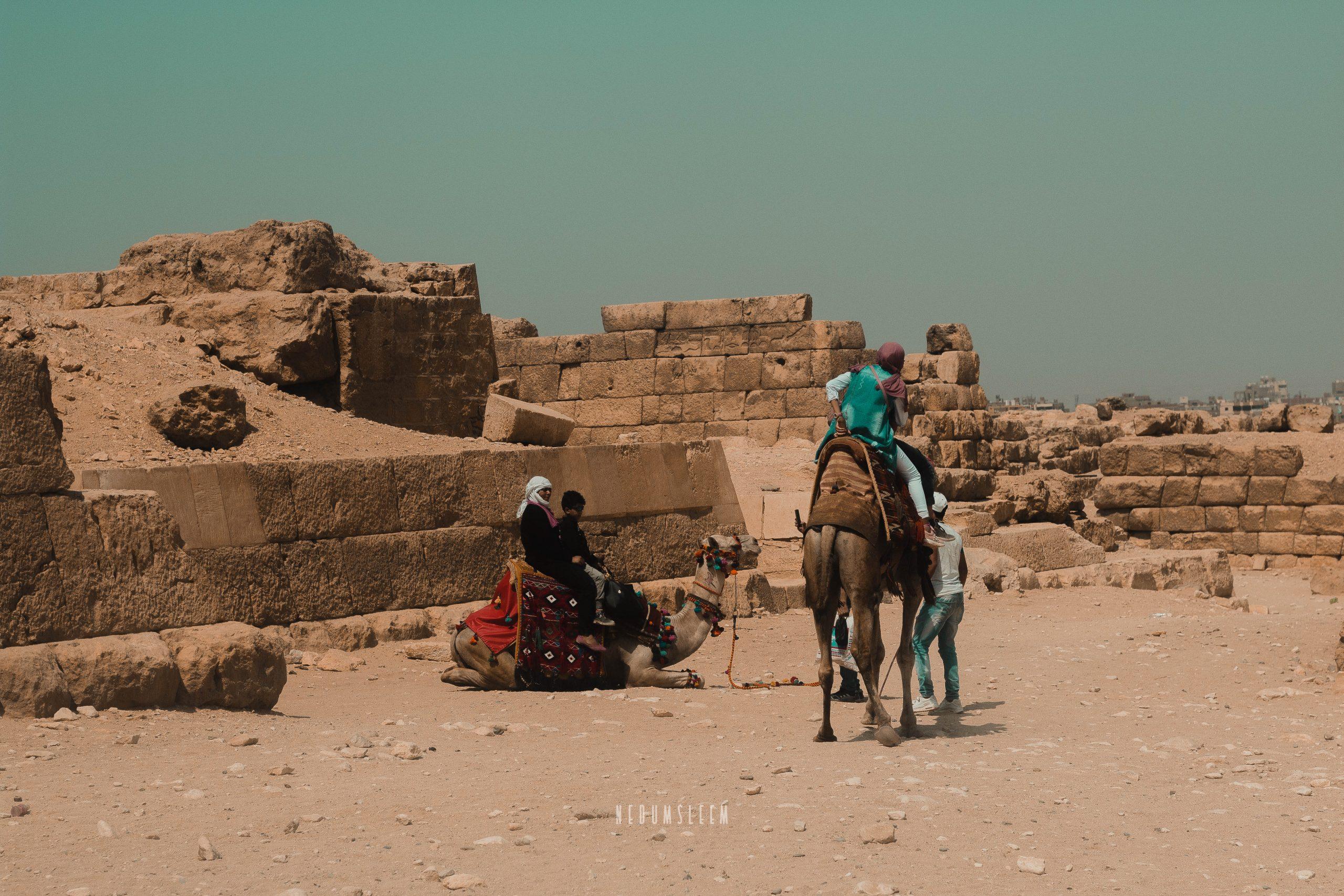 Desert Company,Photo: Desert Travellers, Camels, Stones-Chinedum Odunze