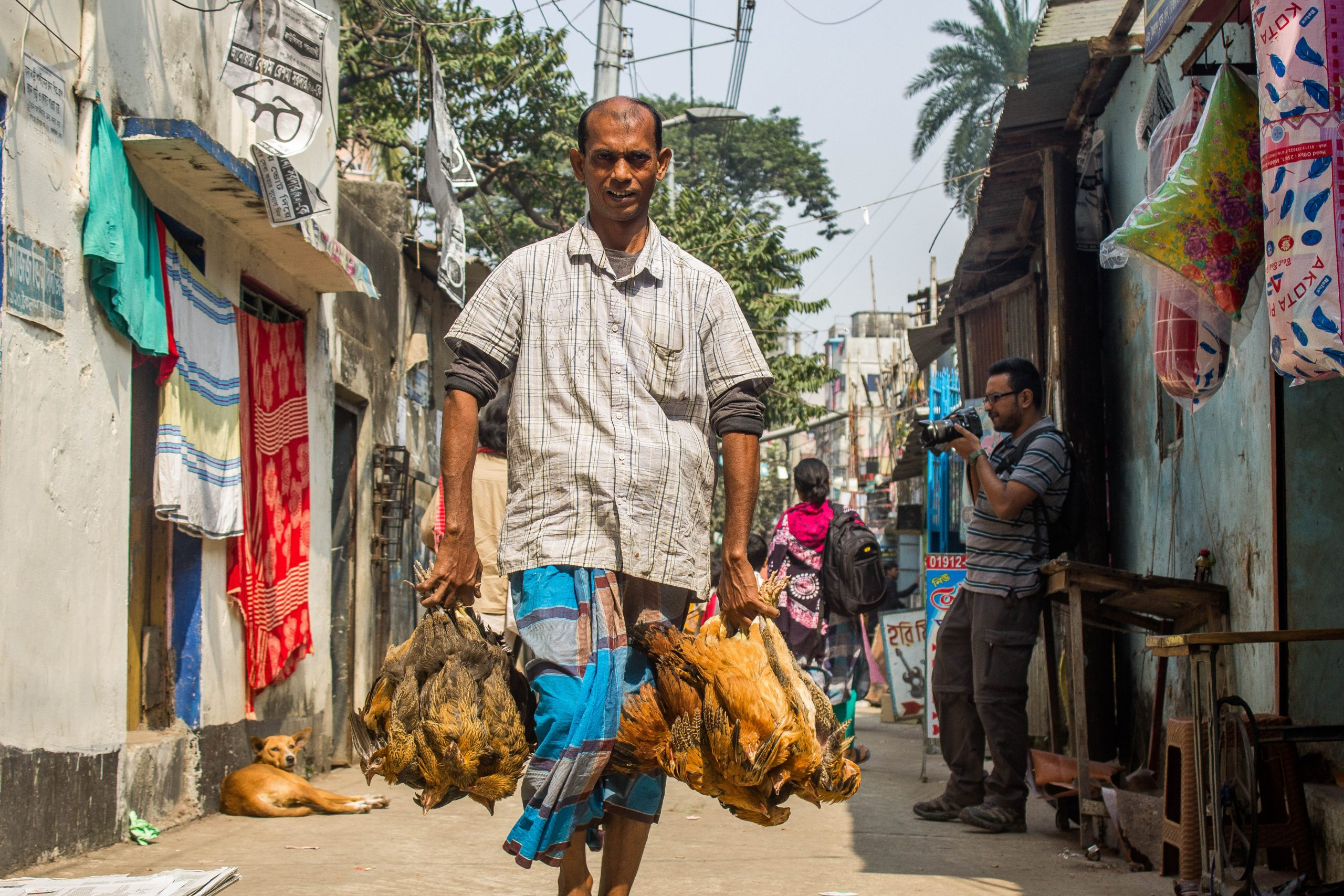 Photo: Bouquet of Chickens. Image of man holding chickens
